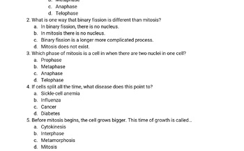 Mitosis Review Guide and Assessment