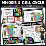 Mitosis & The Cell Cycle Activities Bundle