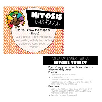 Mitosis Turkey (Can be used with other topics - Editable)