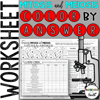 mitosis vs meiosis color by number worksheet for review or assessment - Mitosis Vs Meiosis Worksheet