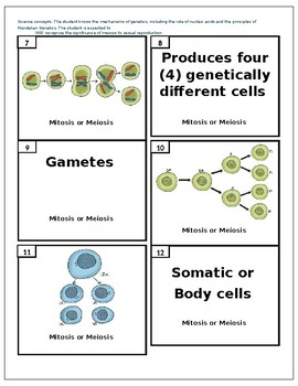 Mitosis Vs. Meiosis Review Activity by Prayer of Jabez | TpT