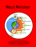 Mitosis Worksheet