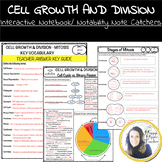 Mitosis Worksheet - Cell Growth and Division