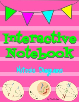 Mitosis and Cell Cycle Interactive Notebook Diagrams
