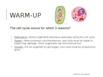 Mitosis and Cell Cycle Presentation