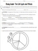 Mitosis and Cell Cycle Study Guide