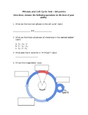 Mitosis and Cell Cycle Test