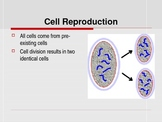 Mitosis and Cell Reproduction Powerpoint