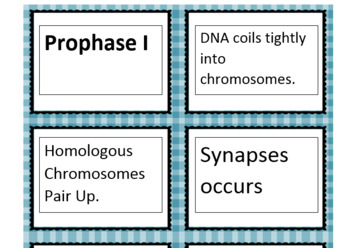 Mitosis and Meiosis Card Sort Statements