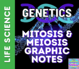 GENETICS: Mitosis and Meiosis Graphic Notes! PDF Version