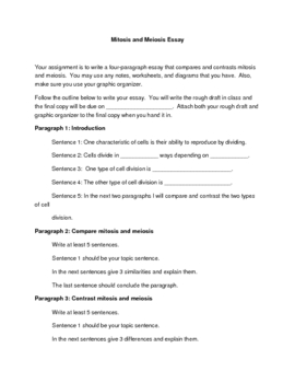 Gatsby Essay Mitosis And Meiosis Essay Essay Paper also My Best Friend Short Essay Mitosis And Meiosis Essay By Alison Crotty  Teachers Pay Teachers Essay Great Gatsby