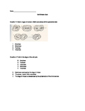 Mitosis and Meiosis Quiz / Test
