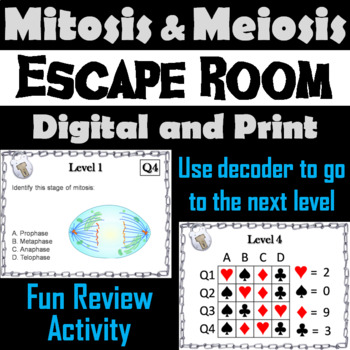 Mitosis and Meiosis Activity: Biology Escape Room - Science