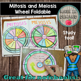 Mitosis and Meiosis Wheel Foldables DISTANCE LEARNING
