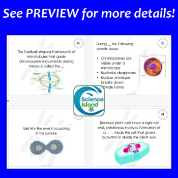 Mitosis and Meiosis Task Cards with PowerPoint Review