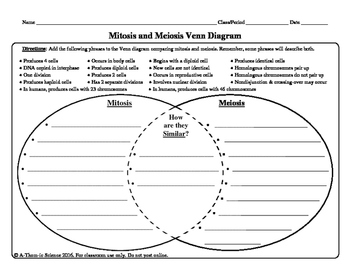Mitosis and meiosis venn diagram by a thom ic science tpt ccuart Gallery