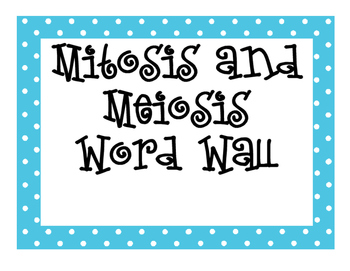 Mitosis and Meiosis Word Wall