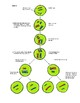 Mitosis and Meiosis for Middle School Kids
