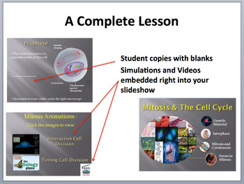 Mitosis and the Cell Cycle - Complete 5E Lesson Bundle