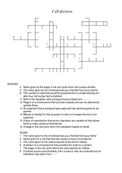 Mitosis crossword