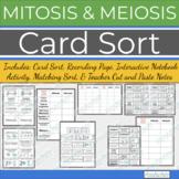 Mitosis versus Meiosis: Card Sort w/ Interactive Notebook Options