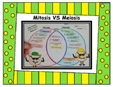 Mitosis vs Meiosis Venn Diagram