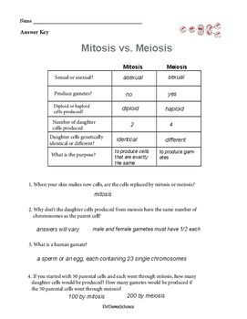 Meiosis Vs Mitosis Worksheet Mitosis vs. Meiosis by...