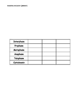 Mitosis vs. Meiosis Graphic Organizer
