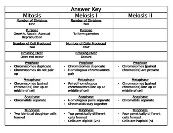 mitosis vs meiosis match up - Mitosis Vs Meiosis Worksheet