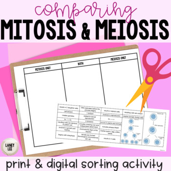 Meiosis vs. Mitosis Compare and Contrast