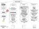 Mixtures - Solutions, Suspensions & Colloids Flow Chart