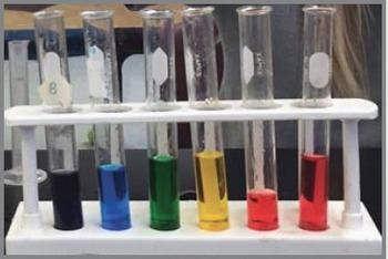 Mixtures, Solutions, and Scientific Method Lab {Editable}