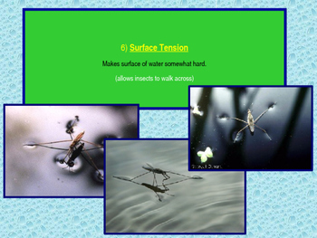Mixtures and Properties of Water