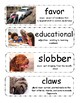 Mo Willems Pigeon Vocabulary Cards