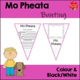 Mo pheata Bunting (Gaeilge) My Pet Bunting