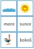 Moana memory cards in Croatian