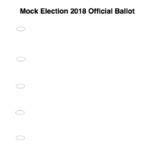 Mock Election Simulation