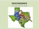 Mockingbird Factual Slideshow w/ Youtube Links