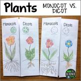 Mocot vs. Dicot Plants Foldable Activity
