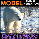 Model Insulation, Fur, Blubber and Feathers - Structure & Function