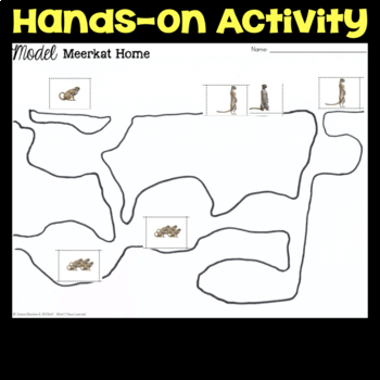 Model a Meerkat Home - Ecosystems: Animal Group Behavior & Interactions