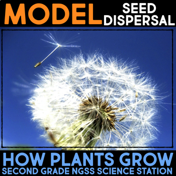 Model Seed Dispersal - Second Grade Science Stations