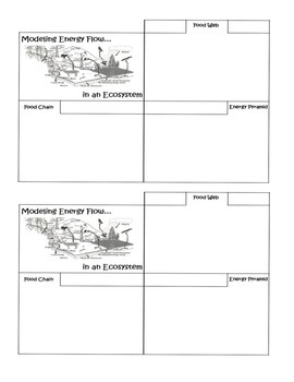 Modeling Energy Flow in Ecosystems:Food Chain, Food Web, Energy Pyramid Foldable