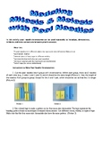 Modeling Mitosis with Pool Noodles