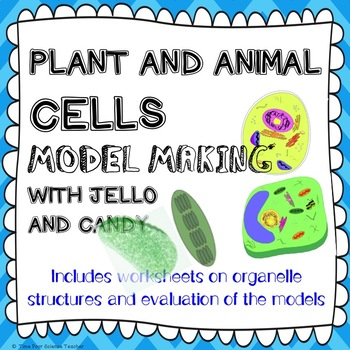 Modelling animal & plant cells & organelles HANDS-ON ACTIVITY & WORKSHEET