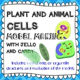 Cell organelles (Plant & Animal) Structure and function lab activity + worksheet