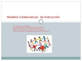 Modelos de Inclusion (power point presentation in Spanish)