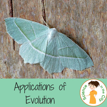 Modern Applications of Evolution