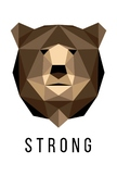 Modern Low Poly Animal Posters