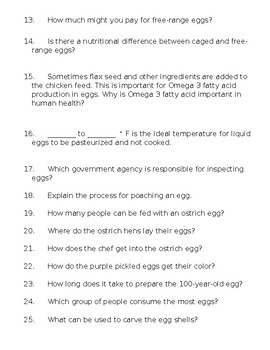 Modern Marvels: The Egg